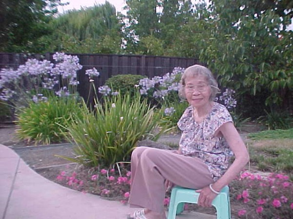 Garden-July 2003 Sonia Chang