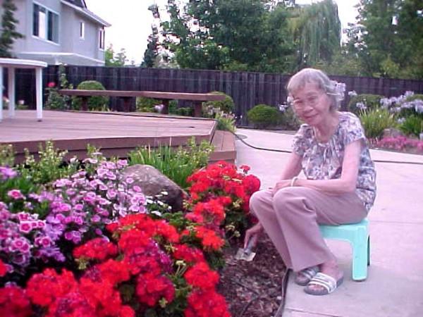 July 2003 Garden Sonia Chang