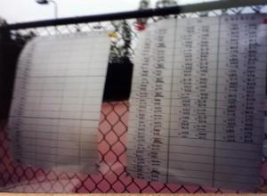 台美軟式網球協會5