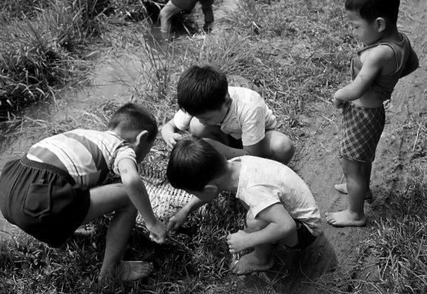 09. 摸蛤仔 Bk 1976